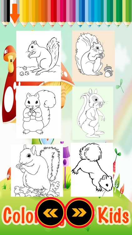 A Little Squirrel Animals Zoo Coloring Books by Kanjanee Sumatchaya