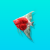 Dreamcatch - Fantasy Fishing Game & Aquarium Icon