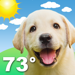 Weather Puppy: Forecast + Dogs