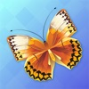 Butterfly Animated Stickers