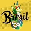 Application CMDS Brésil