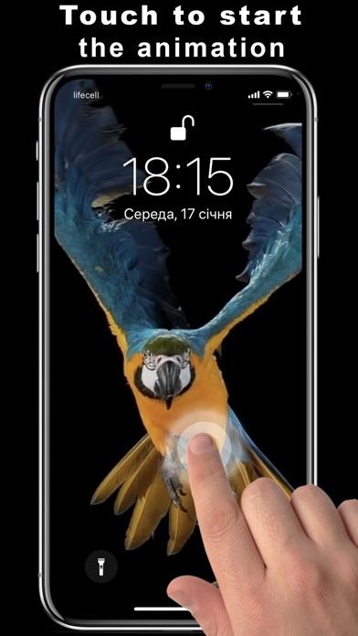 Super Black Live Wallpapers screenshot 2