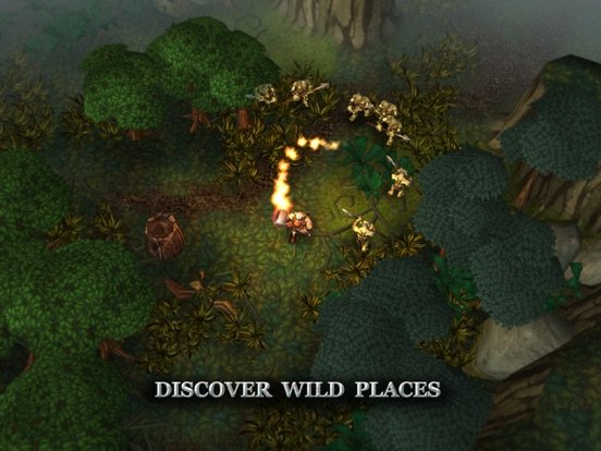 Screenshot 3 Runic Rampage
