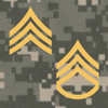 ForceReadiness.com - PROmote - Army Study Guide  artwork