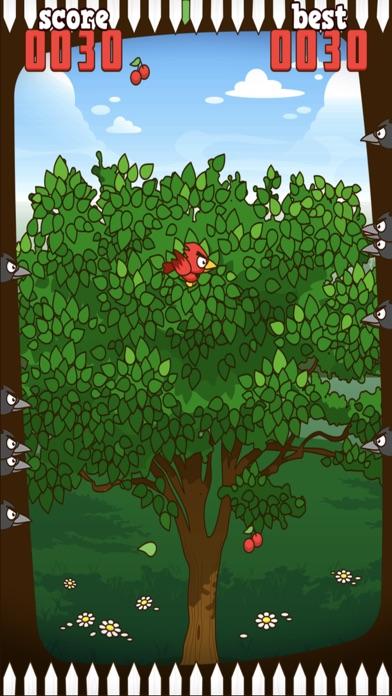 Red Bird - Cherry Challenge Screenshot 2