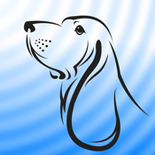 Blue Hound icon