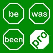 Verbs Pro: English Grammar