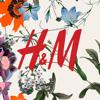 download H&M App