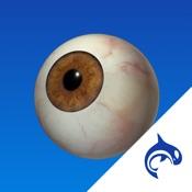Eye Decide