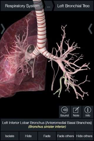 Essential Anatomy 5 screenshot 3
