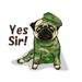 Sticker Animated YellowPug