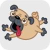 Sweet Pug Run Advance