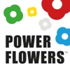 Power Flowers check balances view