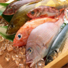 All SeaFood Recipes