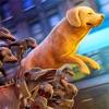 The Walking Dogs: Zombie Apocalypse PRO