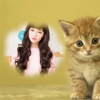 Cute Cat Photo Frame- Best Photo Frame Editor