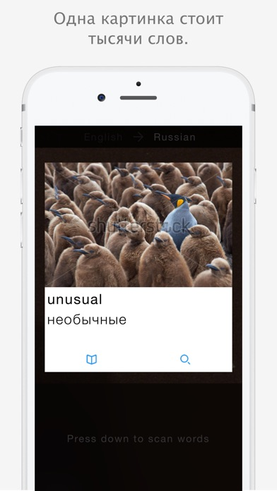 Insta Translate - English to Russian TranslationСкриншоты 2