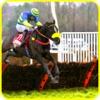 wild Derby Reiten - Pferd Rennen