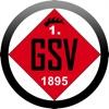 1. GSV 1895