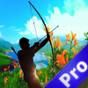 A Fast Archery Shooter Pro - A Bow Hunting Wiki