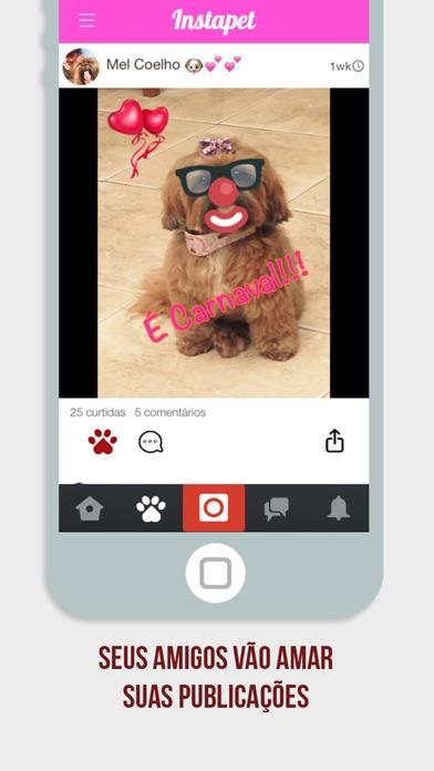 Screenshot do app Instapet - Rede Social pro seu Pet