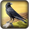 High Fly Crow Hunting: Desert Bird Sniper Mission