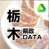 栃木県政DATA