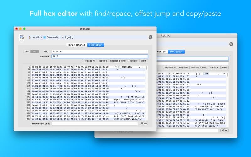2_File_Peek_Hex_editor_hashes_date_changer.jpg