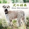 犬の百科辞典