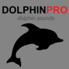 Dolphin Sounds & Whales Wiki