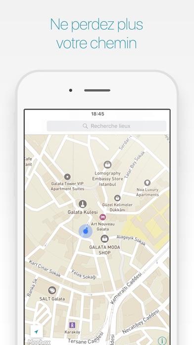 Istanbul Guide Touristique et Cartes OfflineCapture d'écran de 4
