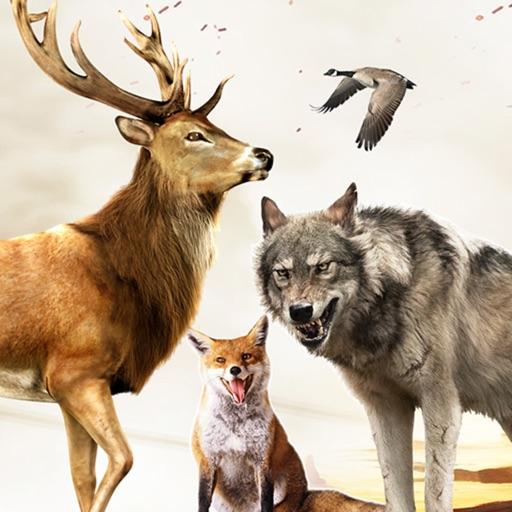 Wild Hunter Sniper 3D - Deer Hunting 2017 iOS App