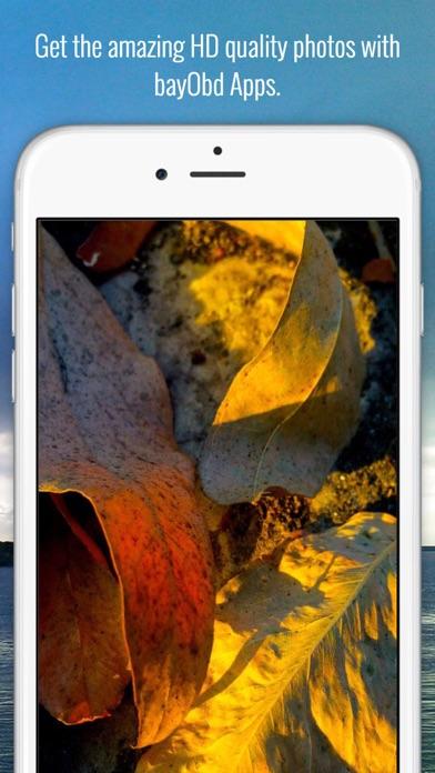 download bayObd - The Bangladesh apps 3