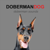 Doberman Dog Sounds and Barking Wiki
