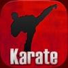 Karate TKD Martial Arts - Black Belt Kumite Kempo