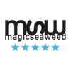 Magicseaweed.com Surf Pronóstico