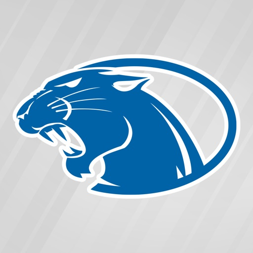 York College Athletics Logo