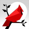Cardinal Land - Jigsaw & Tangram Puzzle Blend