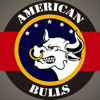 American Bulls Delivery