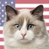 Kittylog - The Complete Catalog Of Cat Breeds