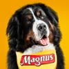 Facens - Magnus Premium artwork