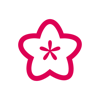 Blossom Dash - collect flowers with a fun! Wiki