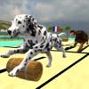 Lava Super Hound Racing