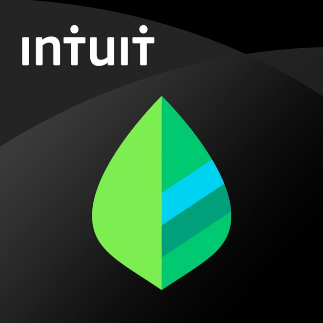Image result for mint app itunes