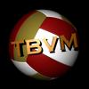 Chuck Ebertin - BBS Beach VB Tournament Stats  artwork
