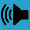 Speaker Polarity