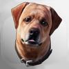 Dex: Your AR Dog Companion