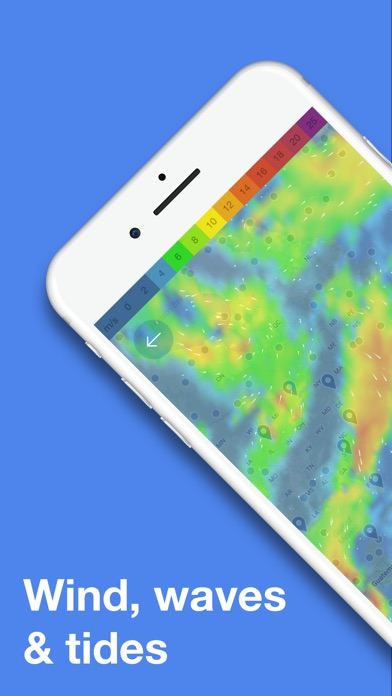 download WINDY - wind & waves forecast apps 3