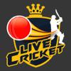 CrickHub: Live Cricket Scores