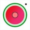西瓜 連衣裙 相機 - WatermelonDress